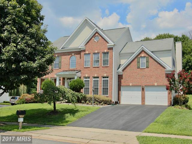 8203 Hortonia Point Drive, Millersville, MD 21108 (#AA10027759) :: Pearson Smith Realty