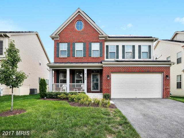 8156 Ridgely Loop, Severn, MD 21144 (#AA10031766) :: Pearson Smith Realty