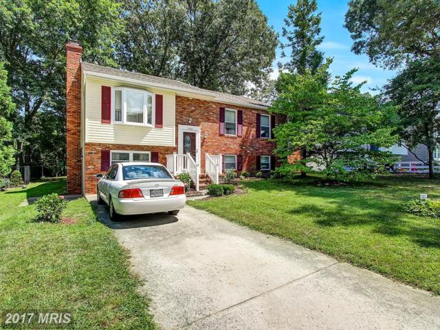 7705 Pecan Leaf Road, Severn, MD 21144 (#AA10032246) :: Pearson Smith Realty