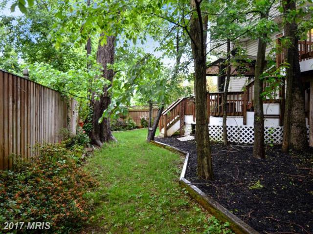 8 Randys Lane, Annapolis, MD 21401 (#AA10032940) :: Pearson Smith Realty