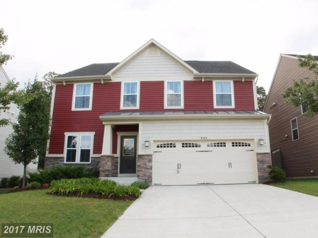 8164 Meadowgate Circle, Glen Burnie, MD 21060 (#AA10034597) :: The Speicher Group of Long & Foster Real Estate
