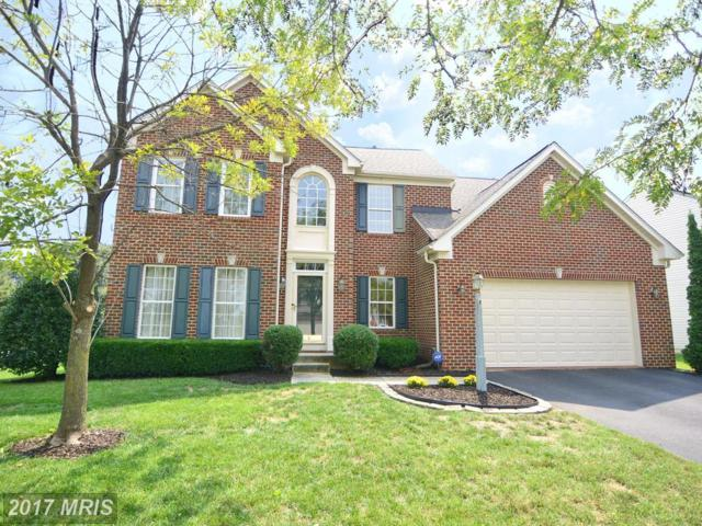 8201 Royal Star Court, Pasadena, MD 21122 (#AA10034813) :: The Sebeck Team of RE/MAX Preferred