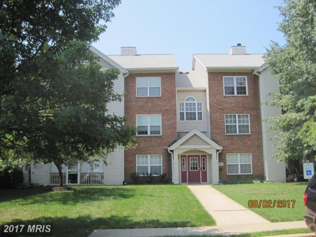 304 Blue Water Court #203, Glen Burnie, MD 21060 (#AA10036249) :: The Bob Lucido Team of Keller Williams Integrity