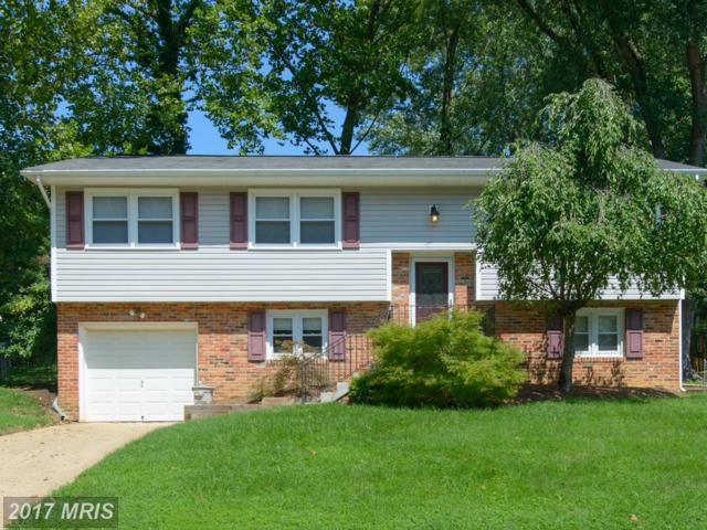 1423 Mariner Drive, Arnold, MD 21012 (#AA10036962) :: Pearson Smith Realty