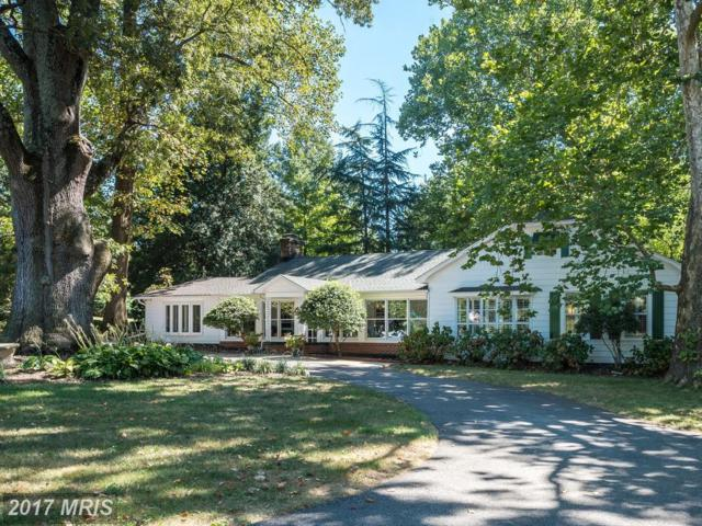 11 Wilelinor Drive, Edgewater, MD 21037 (#AA10038787) :: Pearson Smith Realty