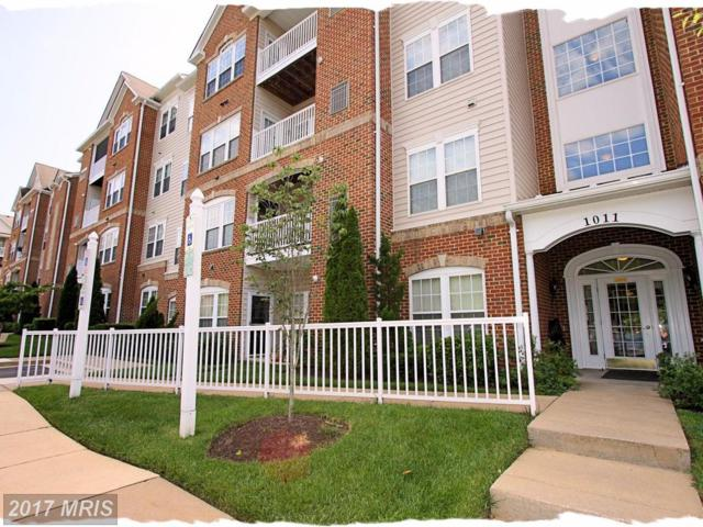 1011 Samantha Lane #203, Odenton, MD 21113 (#AA10042174) :: Pearson Smith Realty