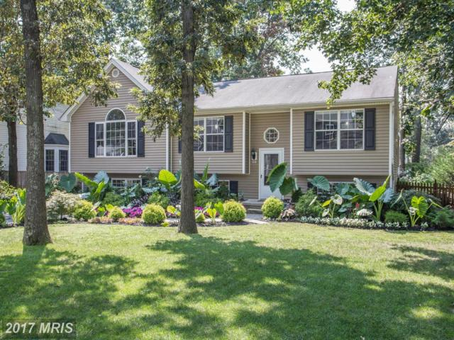 147 W. Earleigh Heights Road, Severna Park, MD 21146 (#AA10044440) :: Pearson Smith Realty
