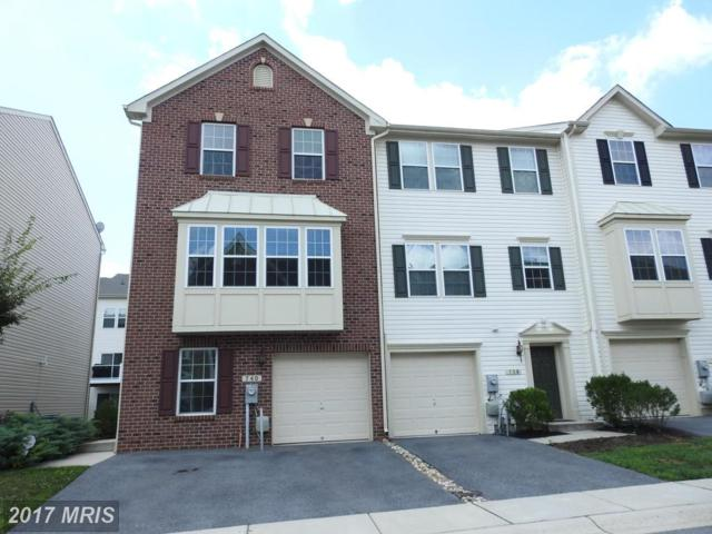 740 Olive Wood Lane, Baltimore, MD 21225 (#AA10048891) :: Pearson Smith Realty