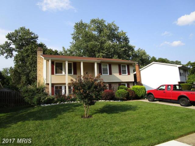 952 Fall Ridge Way, Gambrills, MD 21054 (#AA10048904) :: Pearson Smith Realty