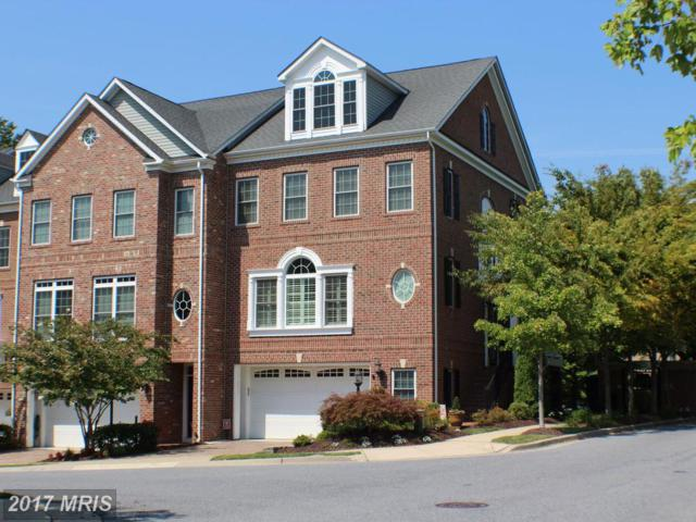 2702 Merlot Lane, Annapolis, MD 21401 (#AA10051701) :: Pearson Smith Realty