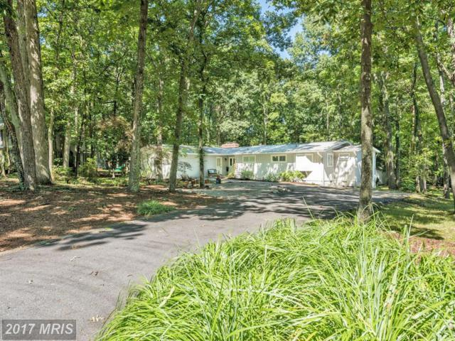 1506 Gordon Cove Drive, Annapolis, MD 21403 (#AA10052215) :: Pearson Smith Realty