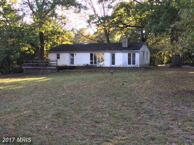 1104 Cherry Point Road, West River, MD 20778 (#AA10053578) :: Pearson Smith Realty