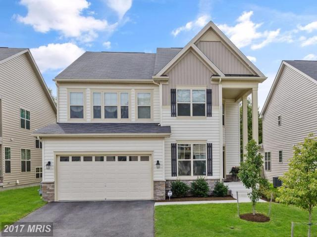 8105 Ridgely Loop, Severn, MD 21144 (#AA10056511) :: Pearson Smith Realty