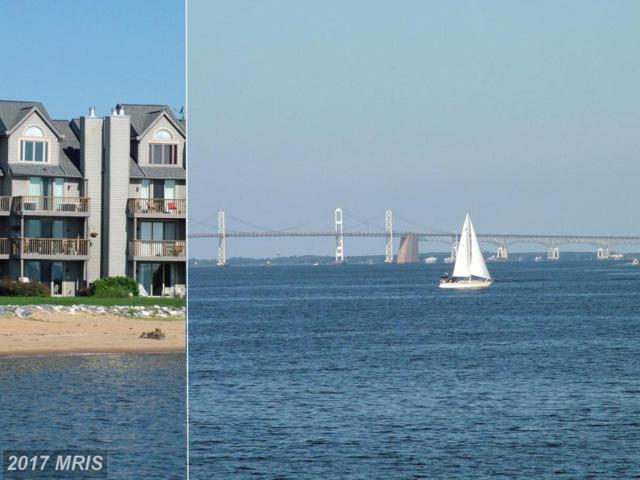 2179 Chesapeake Harbour Drive, Annapolis, MD 21403 (#AA10057609) :: Pearson Smith Realty