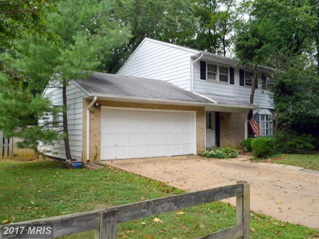 1311 Van Buren Drive, Annapolis, MD 21403 (#AA10057979) :: Pearson Smith Realty