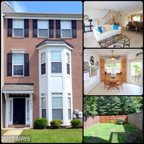 2623 Gray Ibis Court, Odenton, MD 21113 (#AA10058027) :: The Riffle Group of Keller Williams Select Realtors