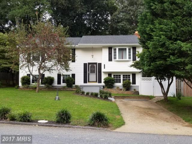 1179 Green Holly Drive, Annapolis, MD 21409 (#AA10058174) :: Pearson Smith Realty