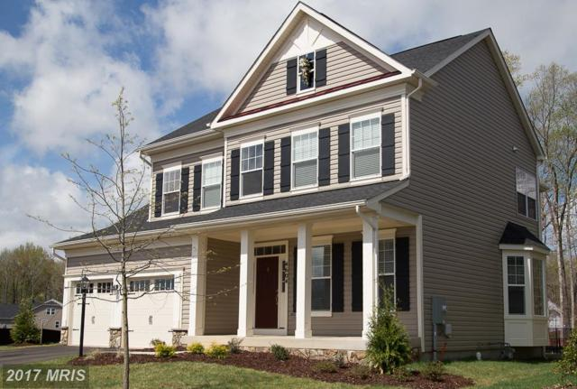 Maccubbin Lane, Gambrills, MD 21054 (#AA10058512) :: Pearson Smith Realty