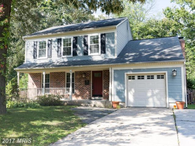 256 Lower Magothy Beach Road, Severna Park, MD 21146 (#AA10059329) :: The Riffle Group of Keller Williams Select Realtors