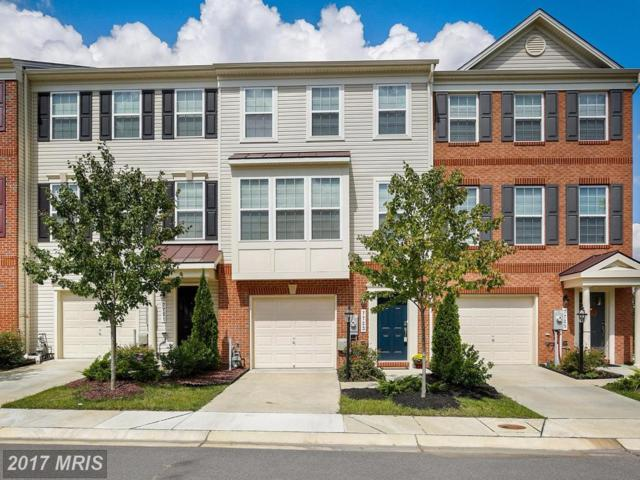 7723 Sentry Terrace, Severn, MD 21144 (#AA10060063) :: The Riffle Group of Keller Williams Select Realtors