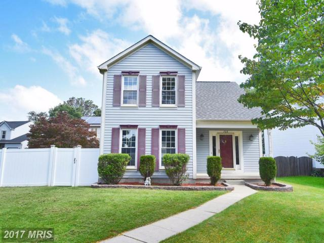 723 Sunnyfield Lane, Baltimore, MD 21225 (#AA10063306) :: Wilson Realty Group