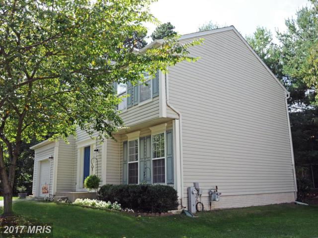 8002 Foxglen Court, Glen Burnie, MD 21061 (#AA10063892) :: Pearson Smith Realty