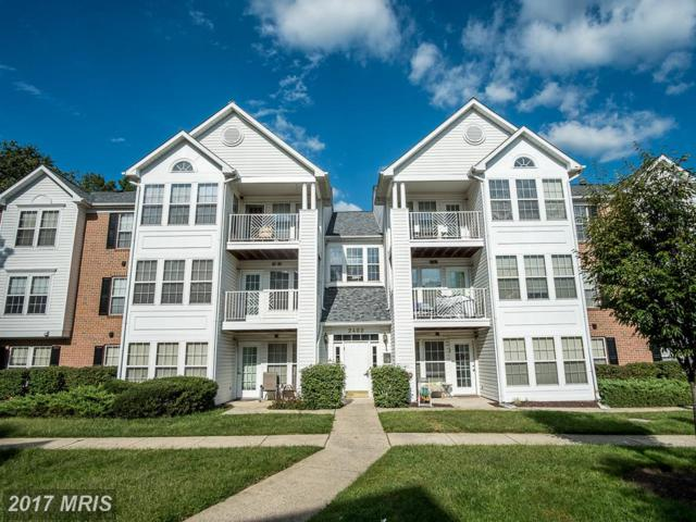 2402 Autumn Harvest Court #201, Odenton, MD 21113 (#AA10065863) :: ExecuHome Realty