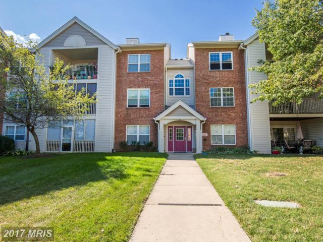 304 Blue Water Court #201, Glen Burnie, MD 21060 (#AA10069254) :: LoCoMusings