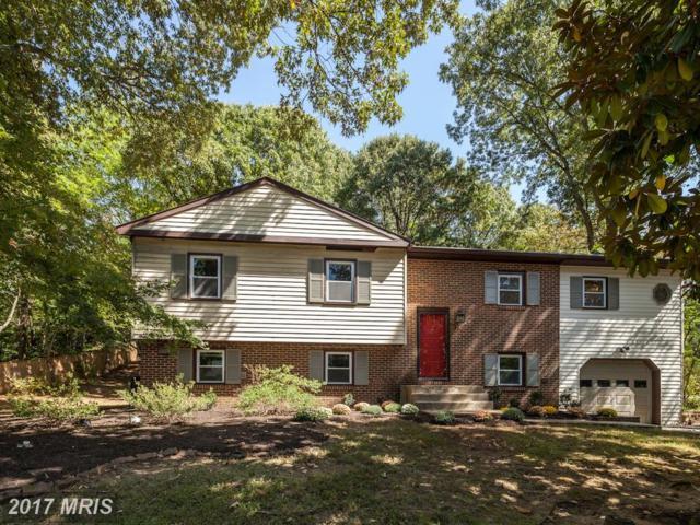 931 Deep Creek Avenue, Arnold, MD 21012 (#AA10070060) :: LoCoMusings