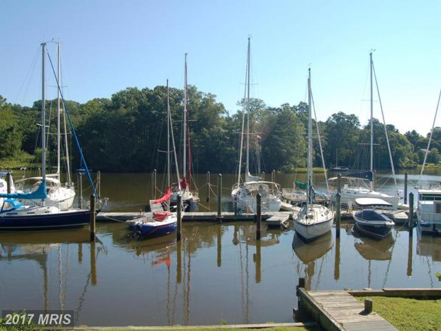 1643 Orchard Beach Road, Annapolis, MD 21409 (#AA10073501) :: Pearson Smith Realty
