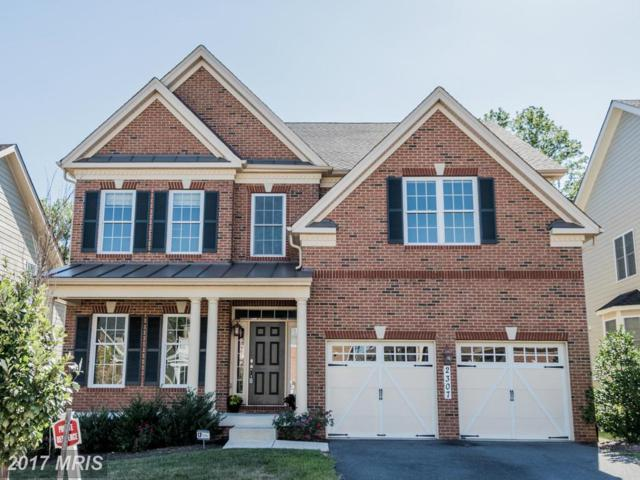 2307 Sycamore Place, Hanover, MD 21076 (#AA10074135) :: LoCoMusings