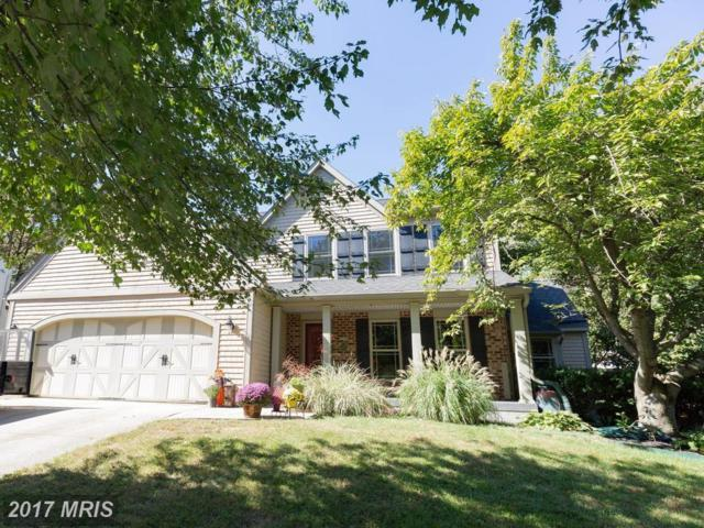 1172 Stiarna Court, Arnold, MD 21012 (#AA10075416) :: Pearson Smith Realty