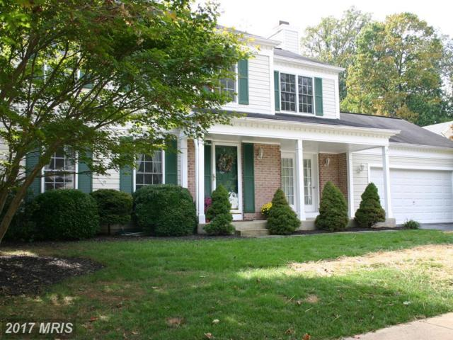 1007 Rosslare Court, Arnold, MD 21012 (#AA10075741) :: Pearson Smith Realty
