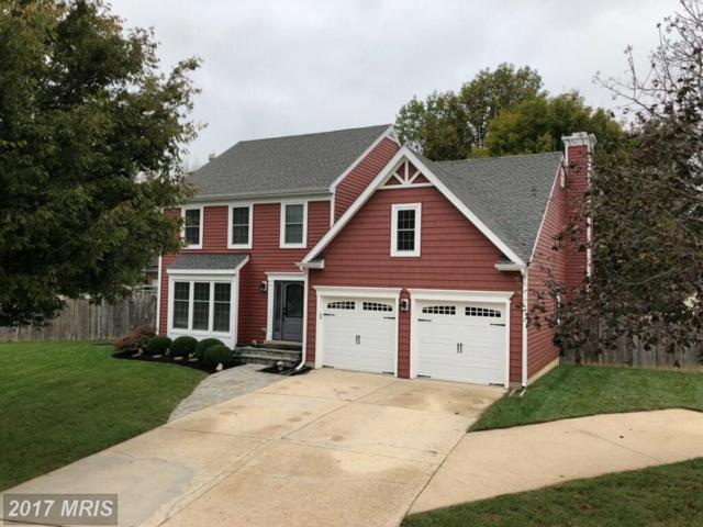 1102 Autumn Gold Drive, Gambrills, MD 21054 (#AA10080476) :: LoCoMusings