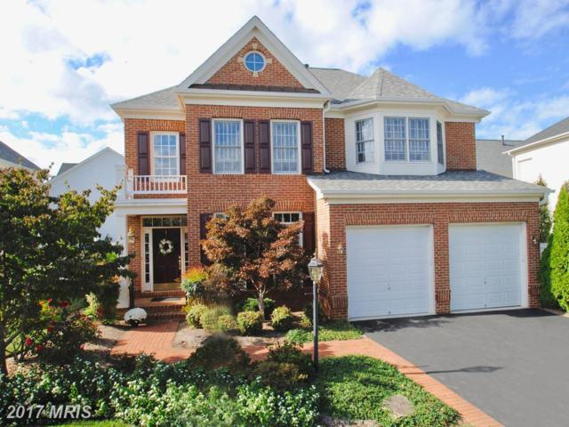 723 Coybay Drive, Annapolis, MD 21401 (#AA10080835) :: LoCoMusings