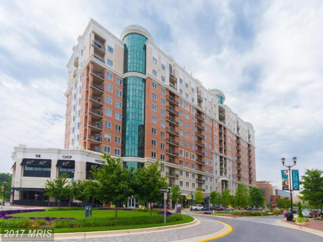 1915 Towne Centre Boulevard #313, Annapolis, MD 21401 (#AA10081388) :: RE/MAX Executives