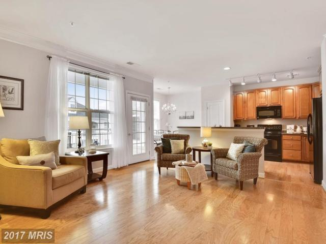 1501 Broadneck Place 4-301, Annapolis, MD 21409 (#AA10082866) :: LoCoMusings