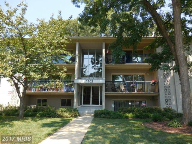 1103 Primrose Court #302, Annapolis, MD 21403 (#AA10086348) :: LoCoMusings