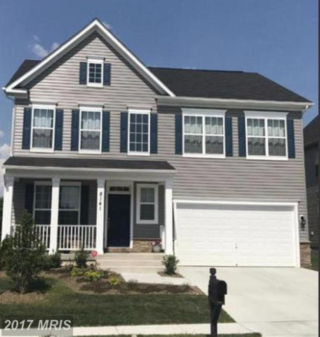 8115 Ridgely Loop, Severn, MD 21144 (#AA10087655) :: Colgan Real Estate