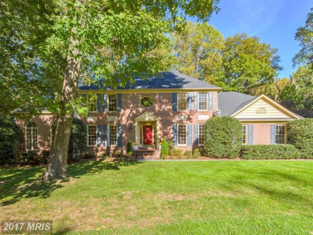 1118 Spy Glass Drive, Arnold, MD 21012 (#AA10088241) :: Charis Realty Group
