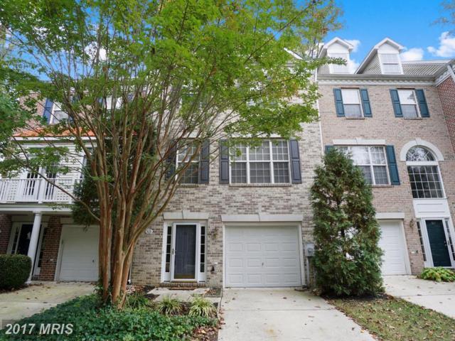 303 Pintail Lane, Annapolis, MD 21409 (#AA10091671) :: Pearson Smith Realty