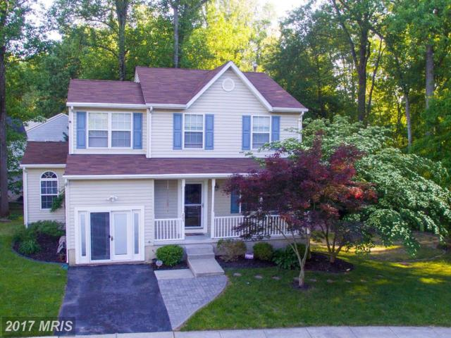 205 Misty View Court, Pasadena, MD 21122 (#AA10096091) :: Pearson Smith Realty
