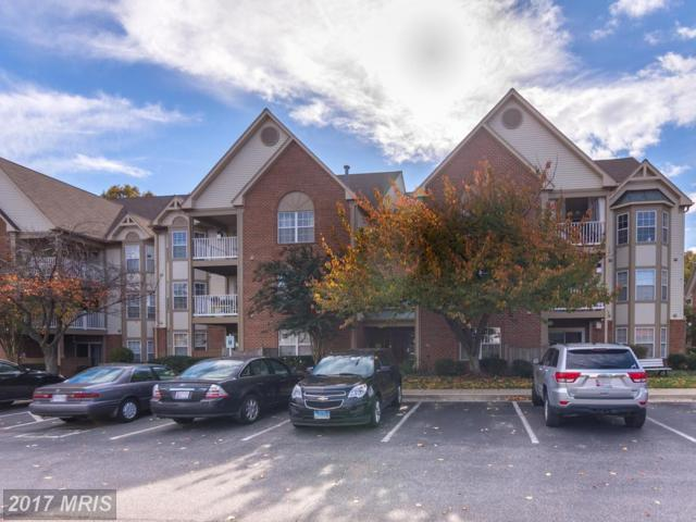 613 Admiral Drive #308, Annapolis, MD 21401 (#AA10097017) :: CORE Maryland LLC