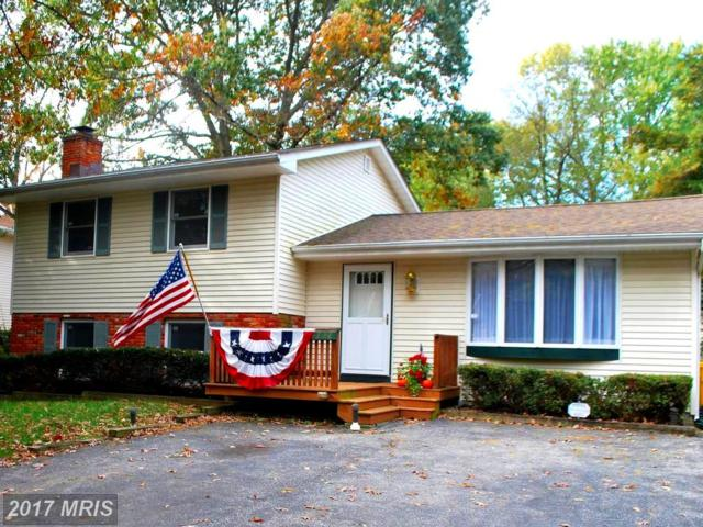 1228 Green Holly Drive, Annapolis, MD 21409 (#AA10098042) :: LoCoMusings