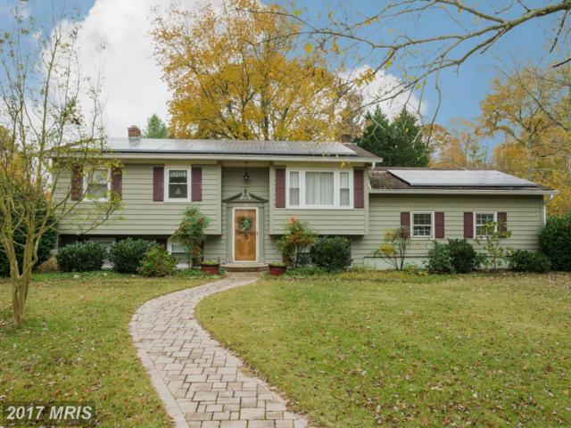 129 Stewart Drive, Edgewater, MD 21037 (#AA10101644) :: Pearson Smith Realty