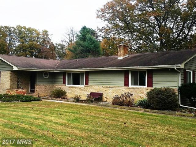 525 Carol Avenue, Gambrills, MD 21054 (#AA10102472) :: The Riffle Group of Keller Williams Select Realtors