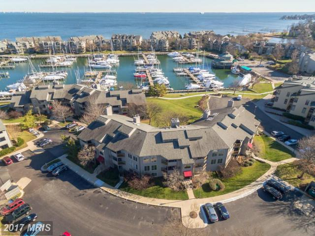7048 Harbour Village Court #102, Annapolis, MD 21403 (#AA10106267) :: The Riffle Group of Keller Williams Select Realtors