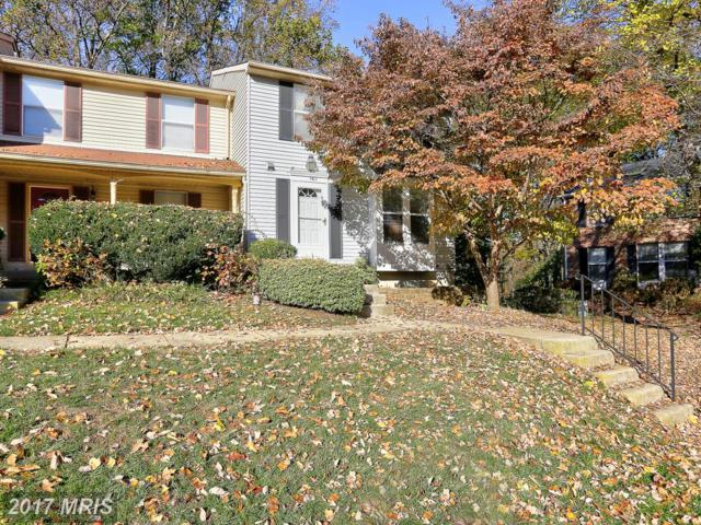 562 Bay Dale Court, Arnold, MD 21012 (#AA10107160) :: The Speicher Group of Long & Foster Real Estate