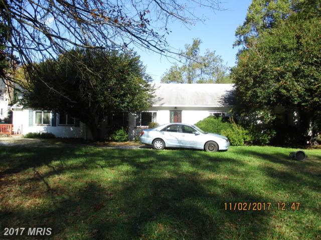 101 Farragut Road, Annapolis, MD 21403 (#AA10108640) :: Keller Williams Pat Hiban Real Estate Group