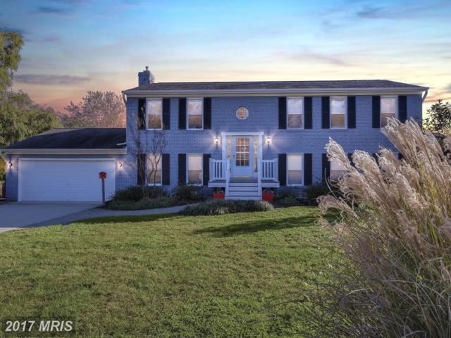 109 Green Spring Drive, Annapolis, MD 21403 (#AA10109044) :: Keller Williams Pat Hiban Real Estate Group
